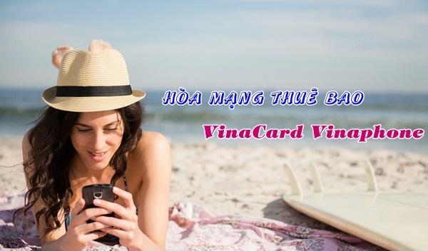 sim VinaCard Vinaphone